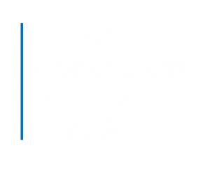 Crown Commercial Services Supplier Logo - Aptive Consulting Ltd